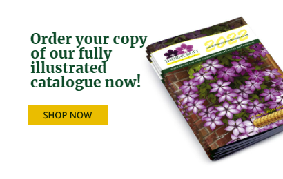 Attractive to Bees